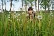 Beauty girl in meadow.