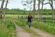 Walk near by dandelion meadow.