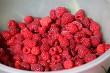 Fresh autumn raspberries in white bowl.