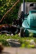 Cat sleeping at the lawnmower.