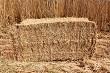 Bundle of reeds