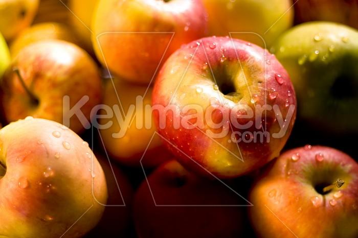 Apples Photo #4330