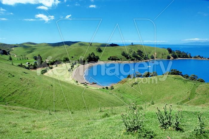 Home Bay NZ Photo #4309