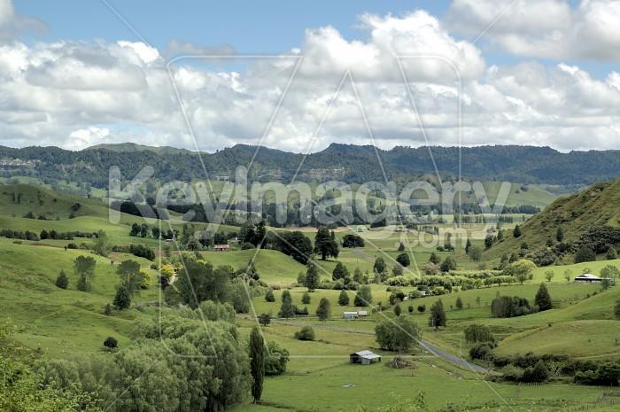 Mokauiti Valley Photo #4998