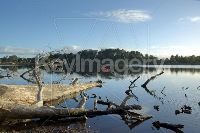 Peaceful lake Photo #4474