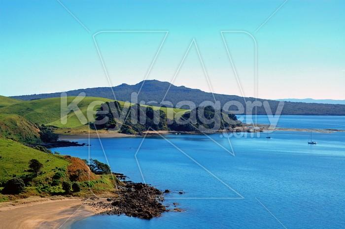 Rangitoto Island Photo #4310