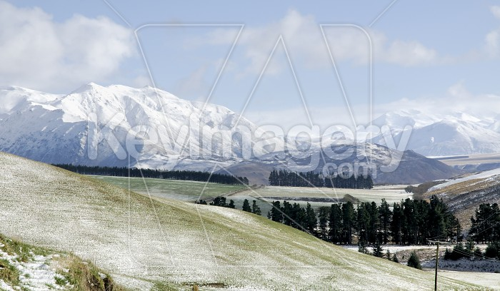 Southern Alps Photo #4495