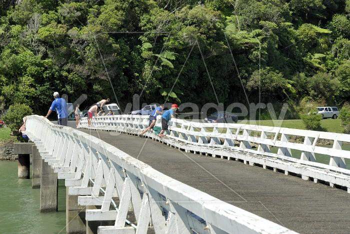 Te Anga Activity Photo #6255