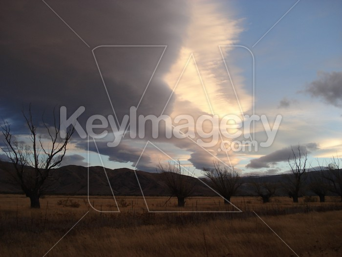 The stark sunset Photo #4684