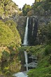 Hunua Falls 5