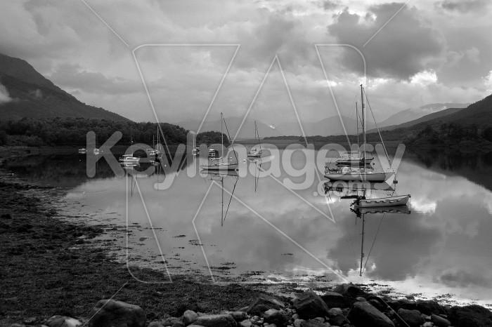 loch haven Photo #4855