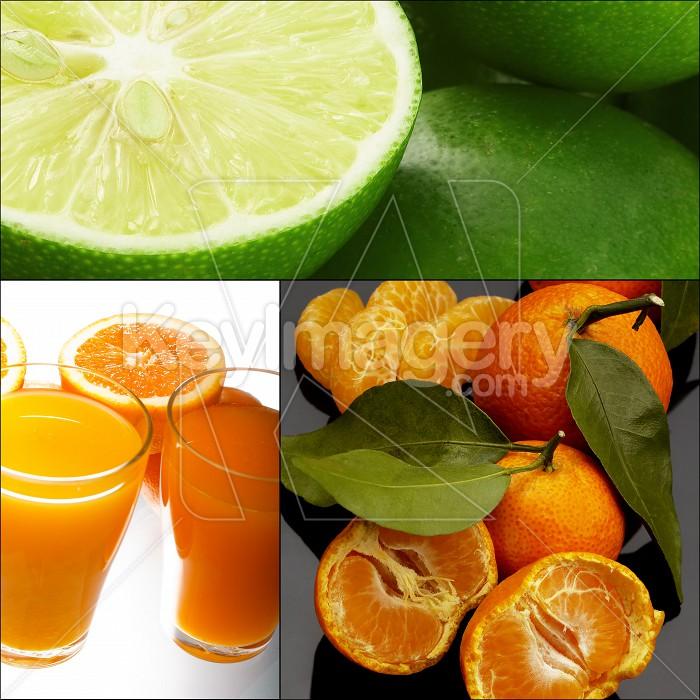 citrus fruits collage Photo #57285