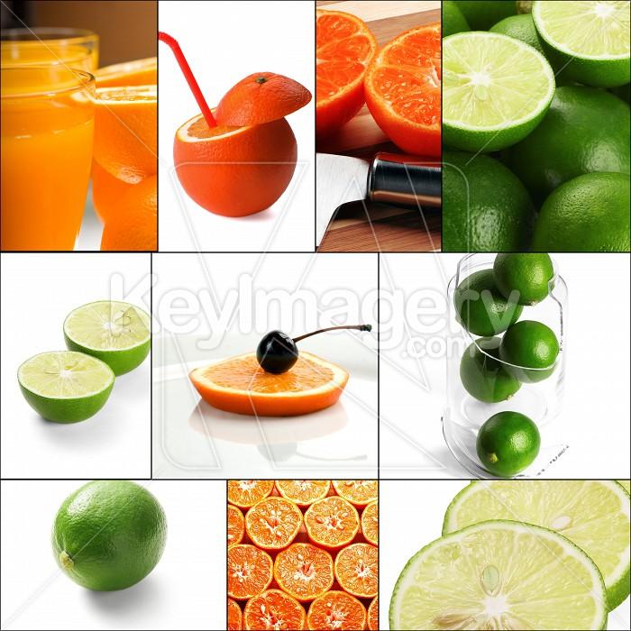citrus fruits collage Photo #57318