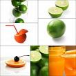 citrus fruits collage