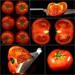 tomatoes collage