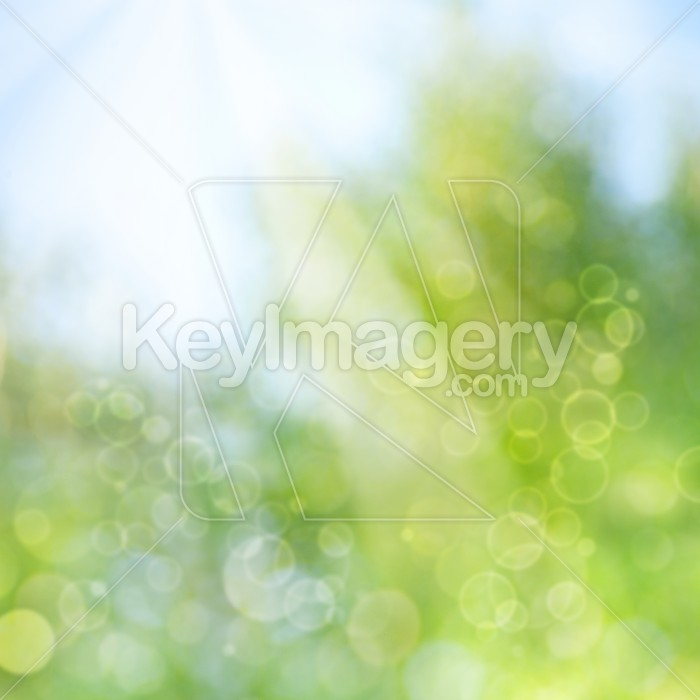 abstract spring and summer backgrounds with beautiful bokeh Photo #51437