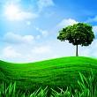 Green hills under the blue sky, natural backgrounds for your des