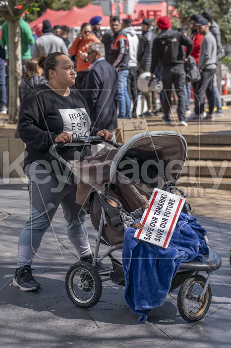 International Campaign Against State Child Protection Systems Photo #62302