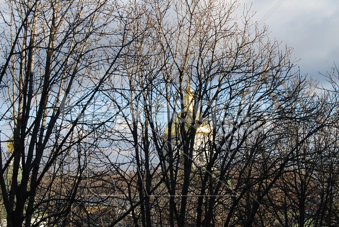 Dome through trees Photo #7375