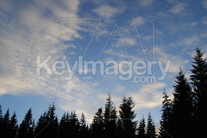 Sky Before Sunset Photo #6021