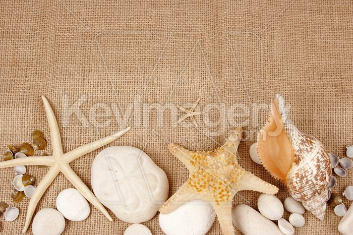 Beach postcard with sea shell and star fish on a burlap Photo #7894