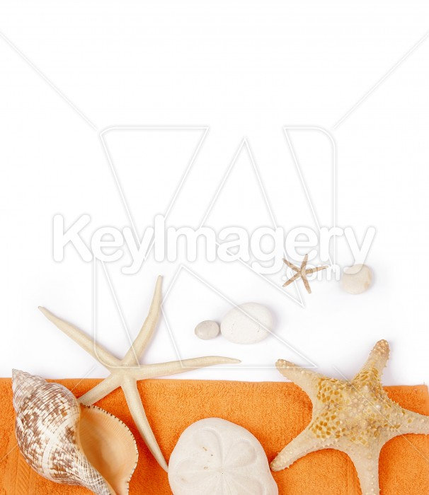 Beach Towel with sea shell and star fish Photo #7893