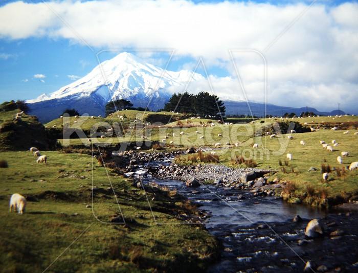 Taranaki Photo #56340