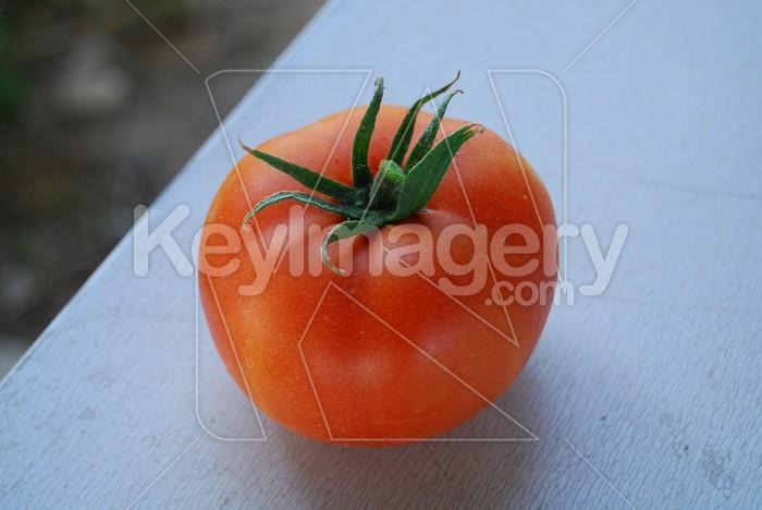 Tomato Photo #7864