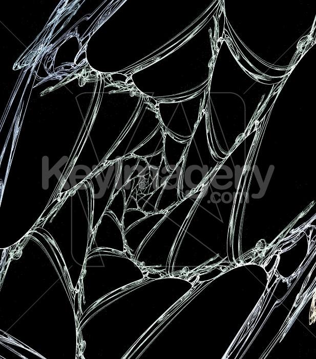 Abstract Cobweb  Photo #6194