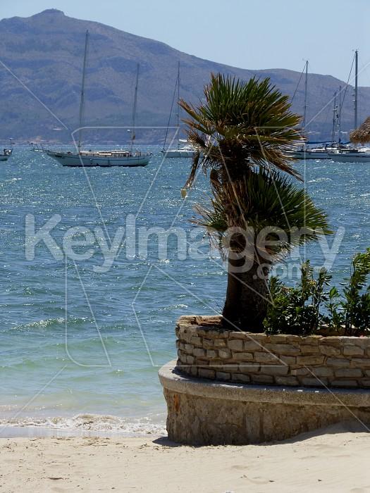 Sea View Photo #6170