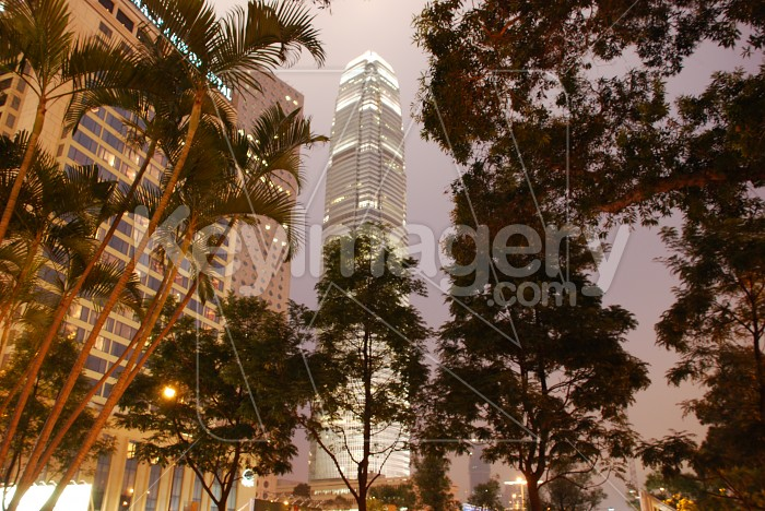 The Hong Kong International Finance Centre (IFC) Photo #6815
