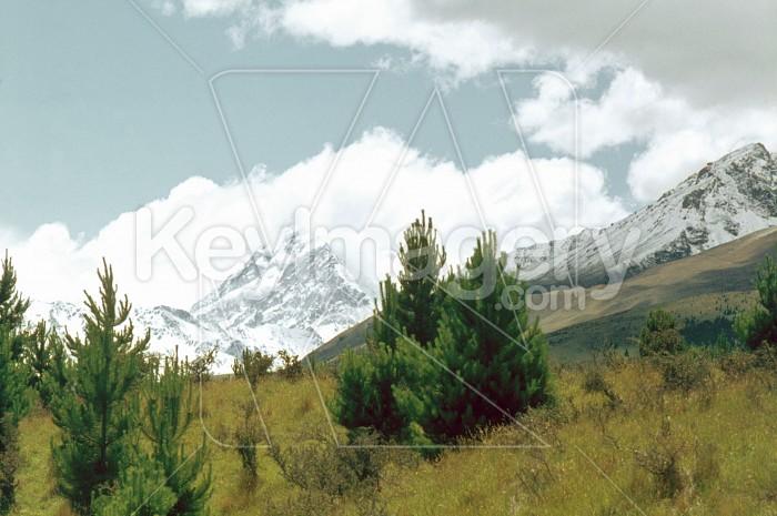 Mt Cook Photo #13976