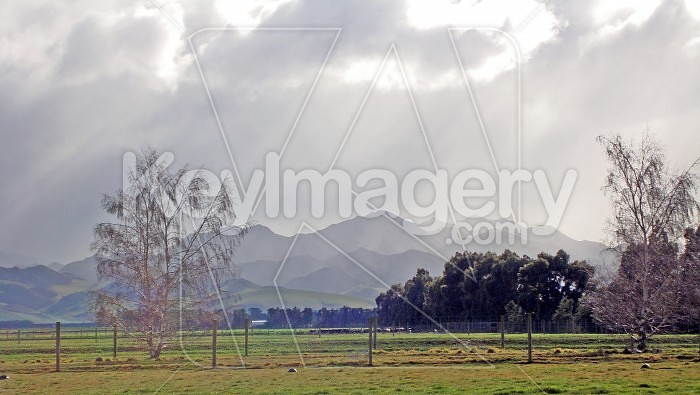 Oncoming rain in Canterbury, New Zealand Photo #21325