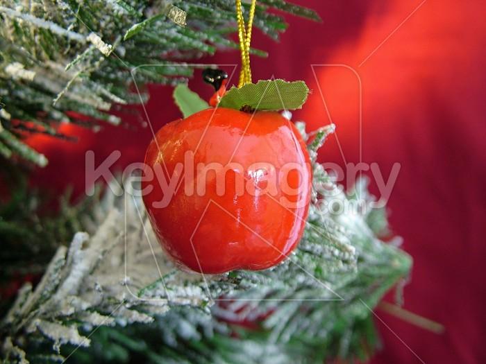 apple christmas decoration on tree Photo #4604