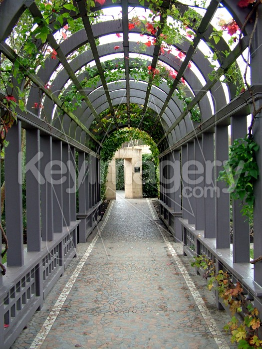 arch path Photo #1332