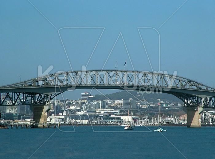 auckland harbour bridge Photo #2165