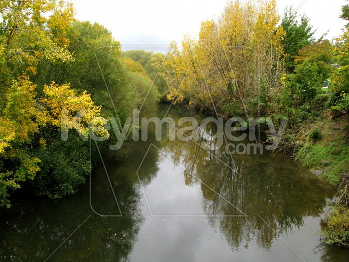 Autumn tree reflections 1 Photo #12674
