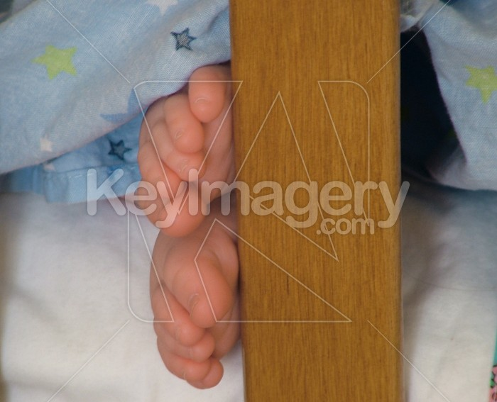 babies feet Photo #746