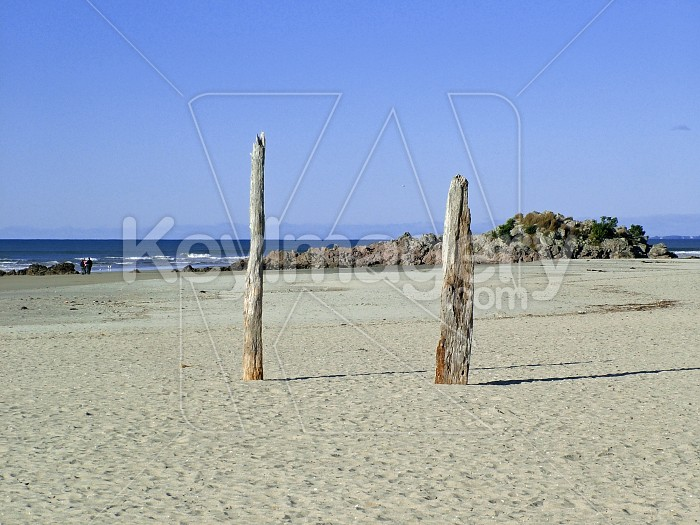beach sticks Photo #2520
