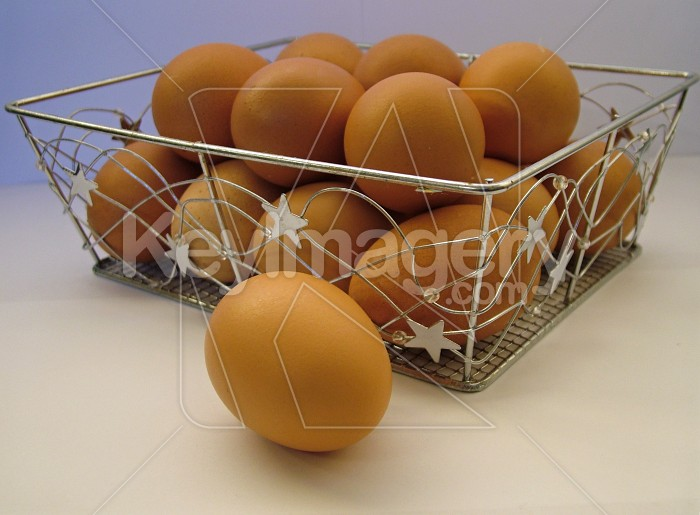 dont put your eggs in 1 basket Photo #922