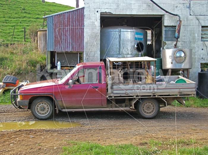 Farm truck Photo #773
