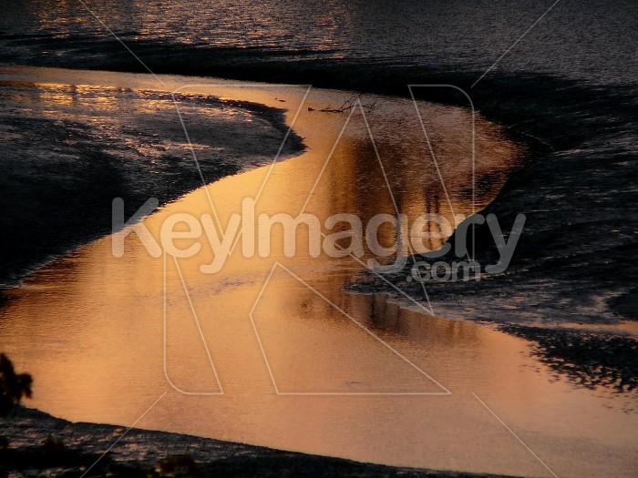 gold river Photo #1814