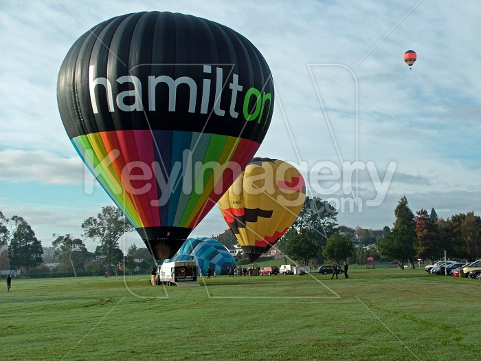 hamilton and waikato balloons Photo #1503