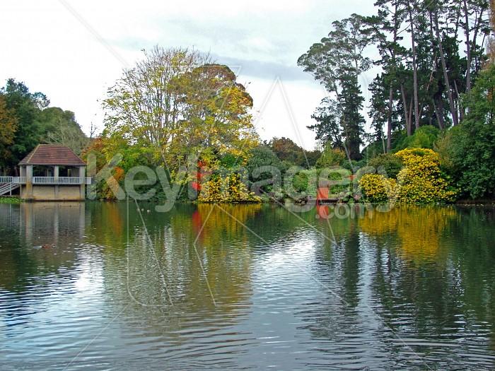 lake reflections Photo #1326
