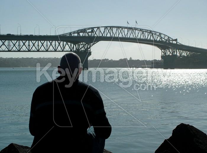 looking towards harbour bridge Photo #2111