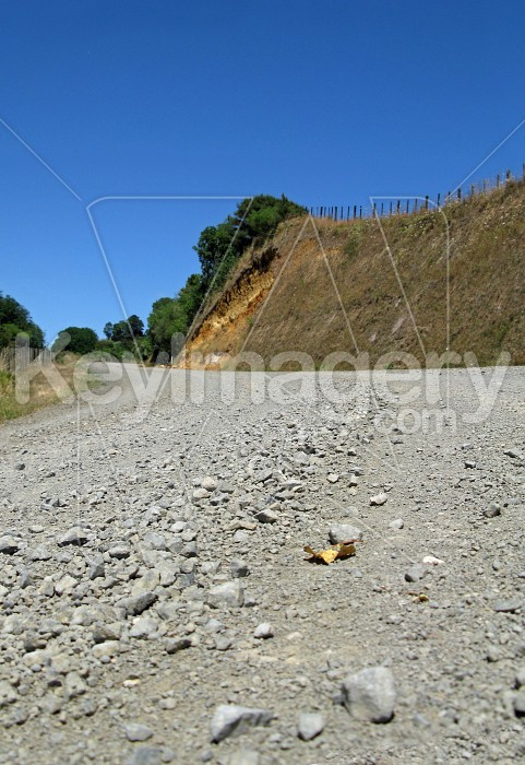 Looking up the gravel road Photo #7639