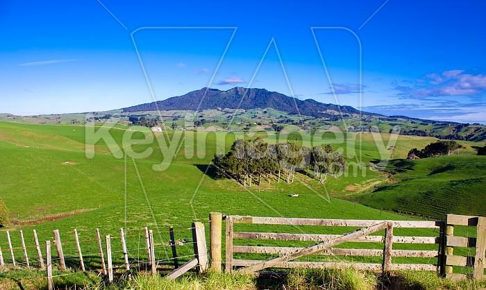 Mt Karioi #2 Photo #47527