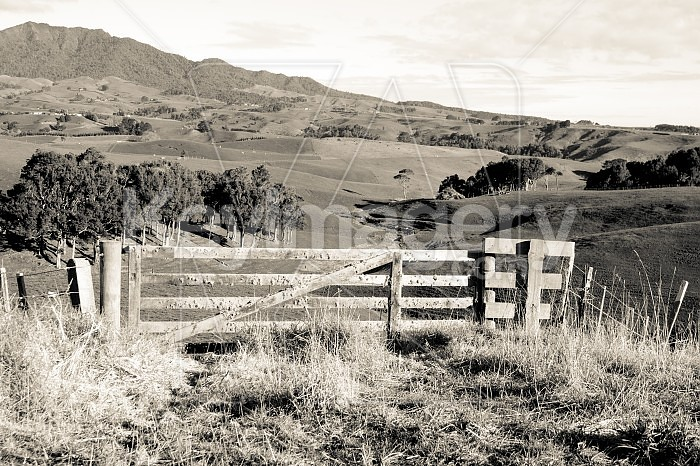 Old gate Photo #47529