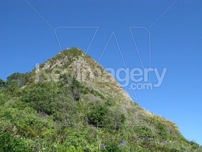 Paritutu mountain Photo #6586