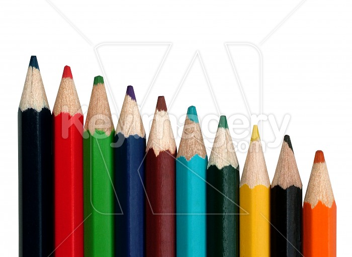 Pencils all in a row Photo #531